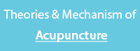 Theories and Mechanism of Acupuncture